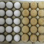 WOODEN EGGS FOR DYEING